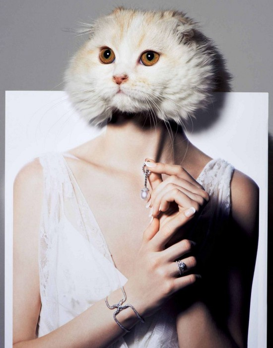 VOGUE珠宝大片:My Kitty Loves Diamond